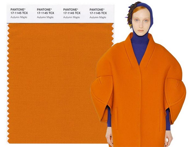 pantone colors Pantone Colors Discover the Pantone Colors for this Fall fall winter 2017 2018 pantone colors Autumn Maple
