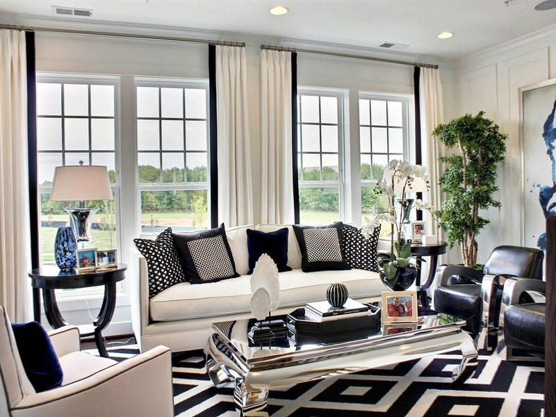Living Room Design inspiration: Black and White Living Room Design inspiration Black and White Living Room12