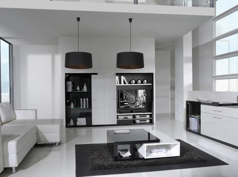 Living Room Design inspiration: Black and White Living Room Design inspiration Black and White Living Room7